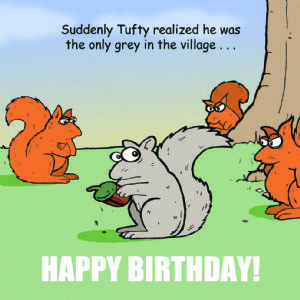 TW282 - Only Grey Funny Happy Birthday Greeting Card